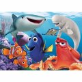 Dory and friends 24 mcx