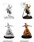 D&D Unpainted Minis: Fire Genasi Female Wizard
