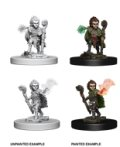 Pathfinder PF Deep Cuts Unpainted Minis: Gnome Male Druid