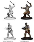 D&D Unpainted Minis: Nameless One
