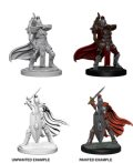 Pathfinder PF Deep Cuts Unpainted Minis: Female Knight and Gray Maiden